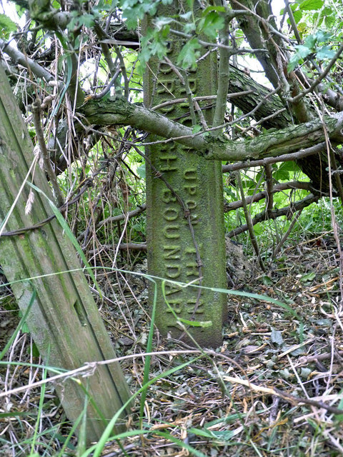 Boundary post on Outwoods Hills