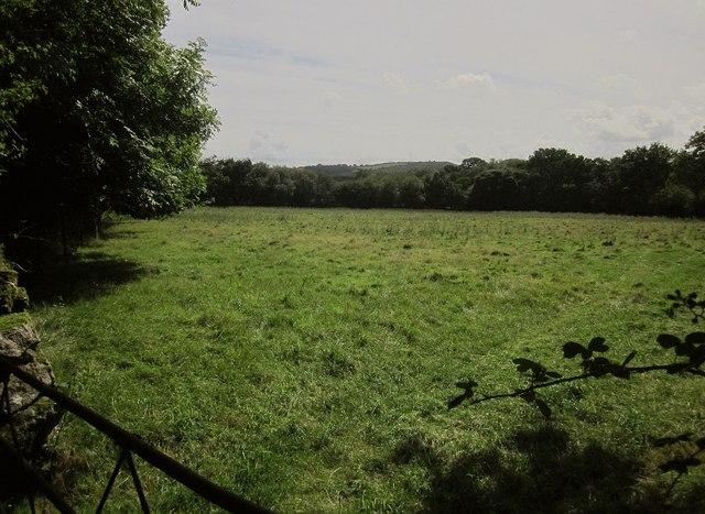 Field, Fursdon