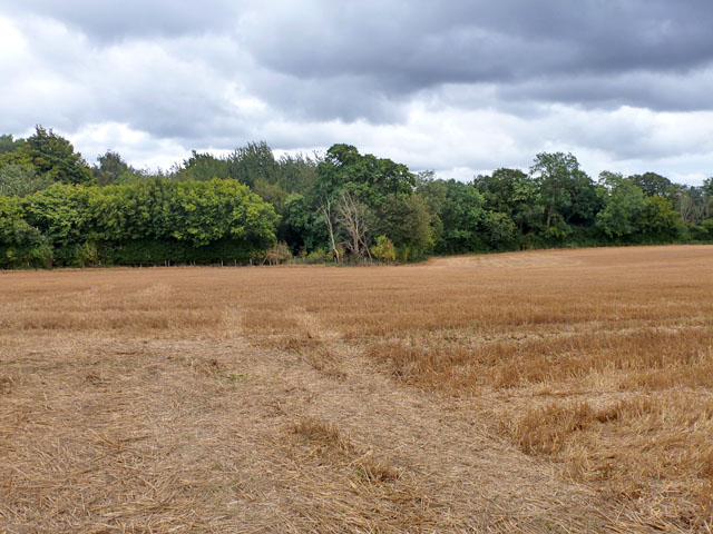 Harvested field near Chenies