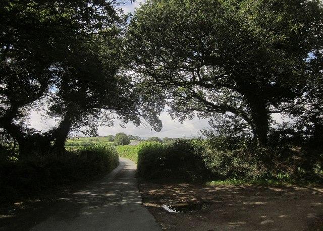 Lane near East Combe