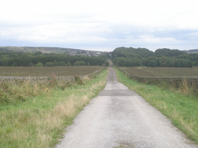 Lane towards Hazelhead Hall