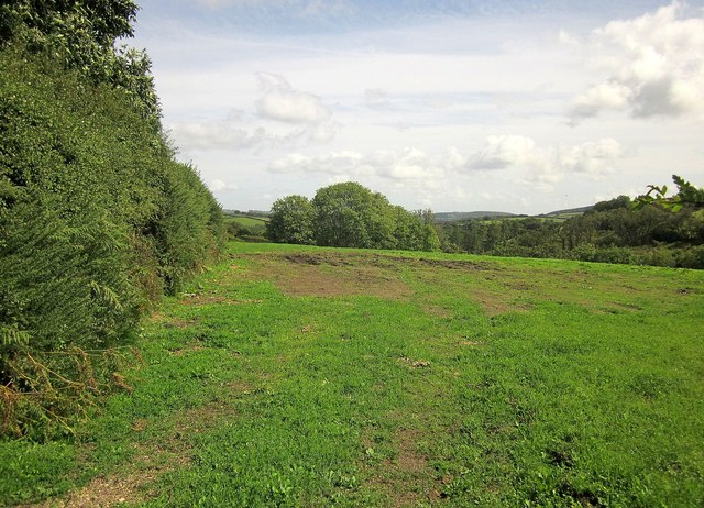 Field above the Bovey