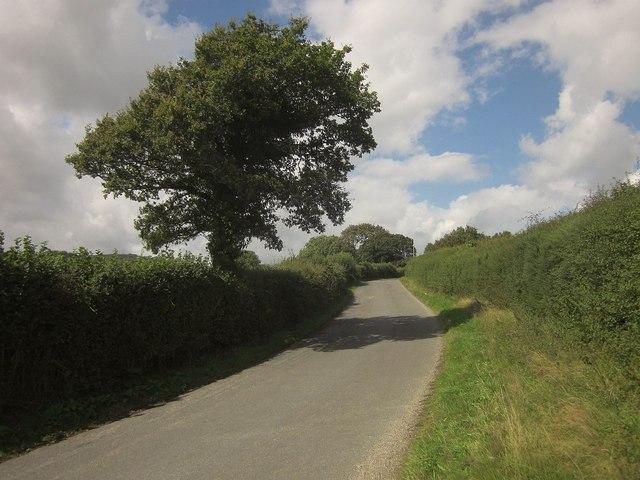 Lane to Stiniel