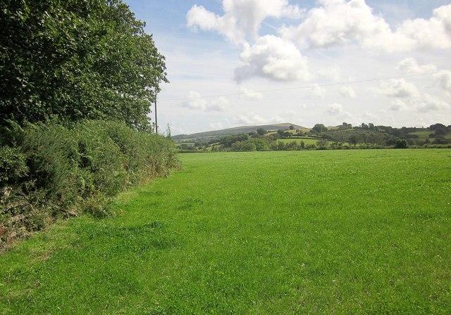 Field by Batworthy Mill Cross