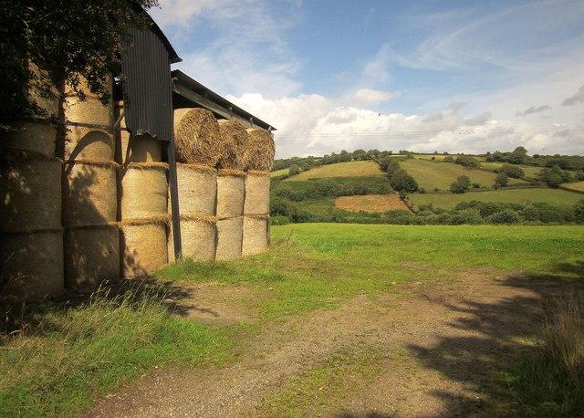Bales, Batworthy Mill Cross