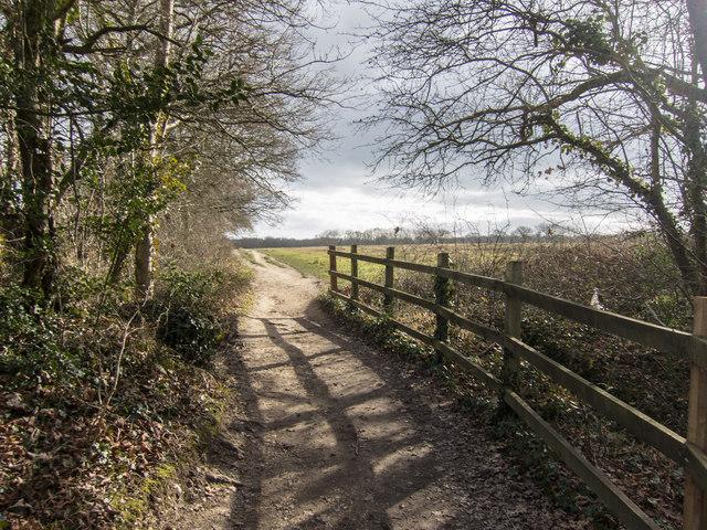 The Solent Way