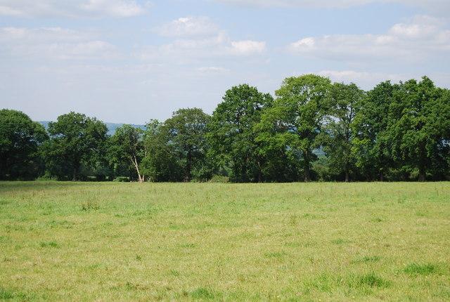 Countryside near Buckhurst Farm
