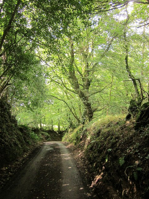 Lane to Drewston Cross