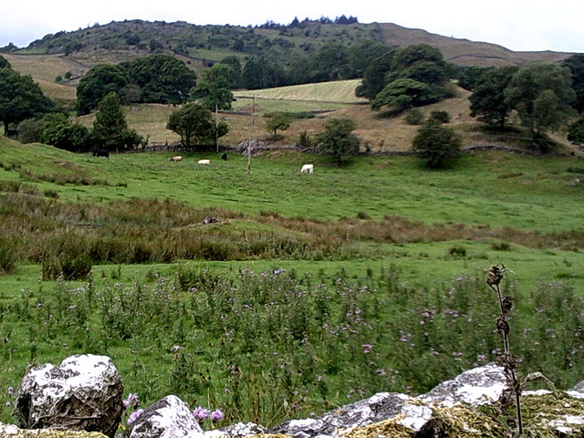 School Knott from Borwick Fold