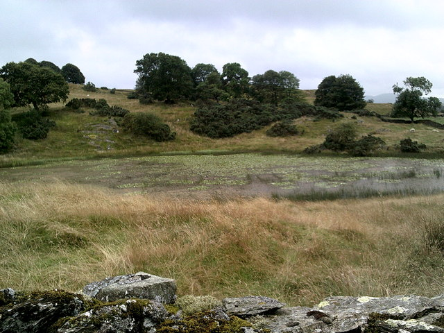 Borwick Fold Tarn