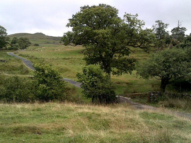 Road leading past High Fairbank