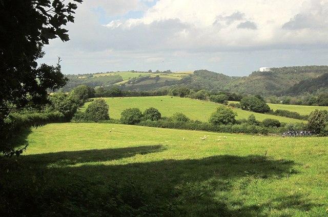 Field near Drewston