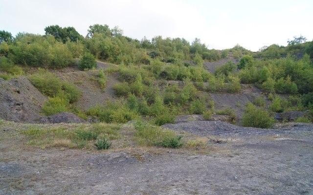 Former workings - Woolladen Stone Quarry