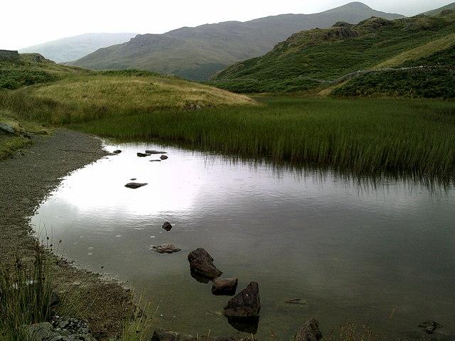 A reedy Alcock Tarn, looking towards Stone Arthur