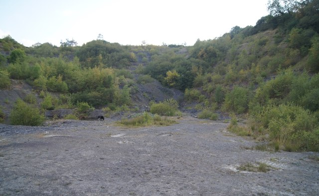 Former workings - Woolladen Stone Quarry