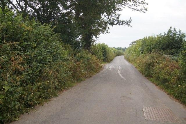 Lane to Petrockstowe