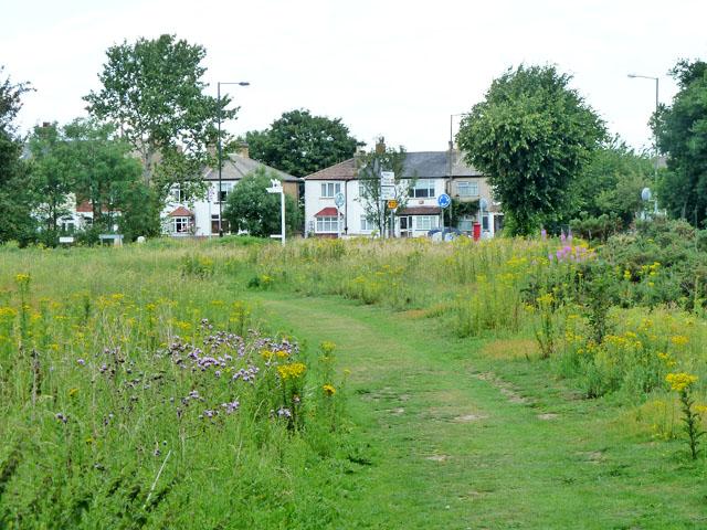 Path, Mitcham Common