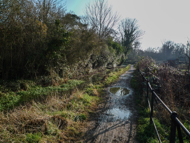 Footpath by Empty Common