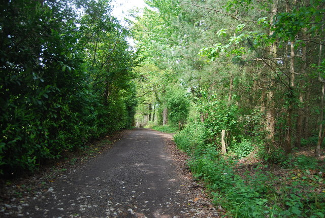 Bridleway west of the A281