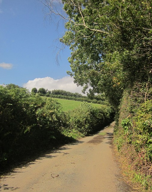 Lane past Stone Copse