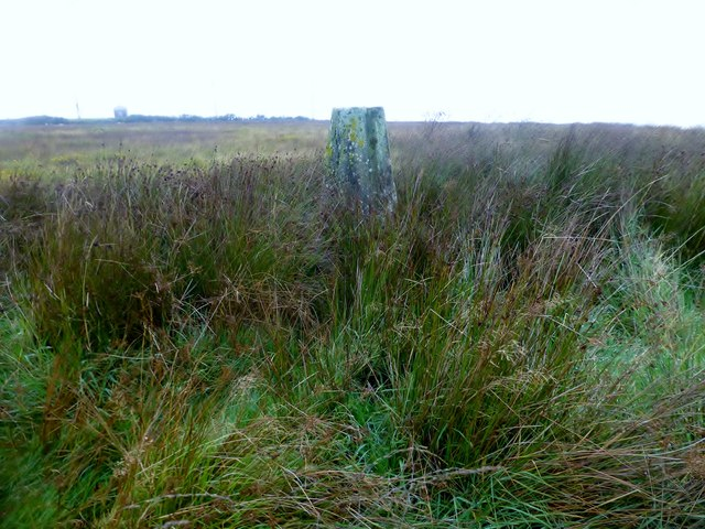 Hendon Moor Trig Point