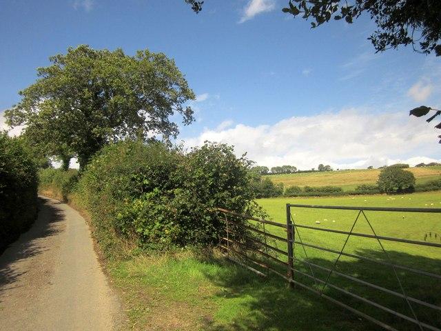 Lane to Stone Farm