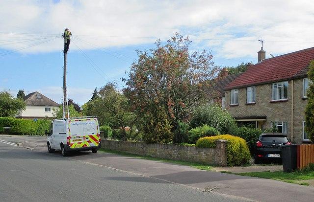 Up the pole on Coleridge Road
