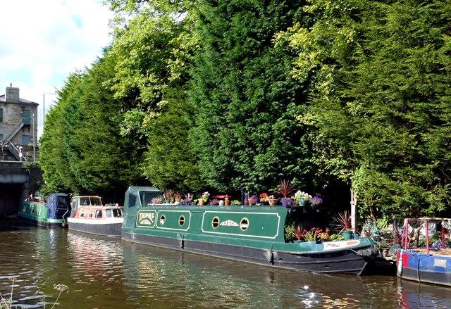 Tadpole - a floating garden