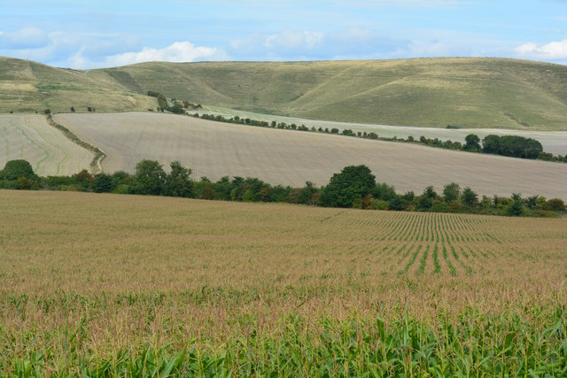 View towards the Marlborough Downs, Allington, Wiltshire