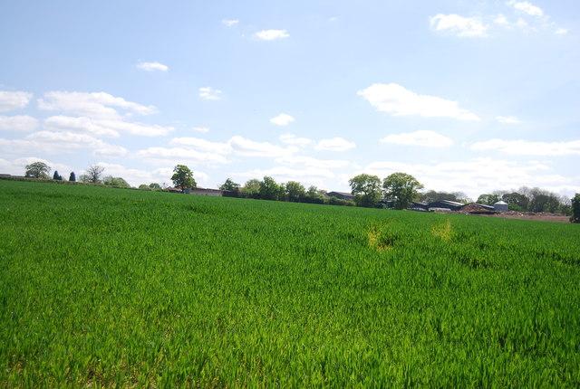 Tickfold Farm