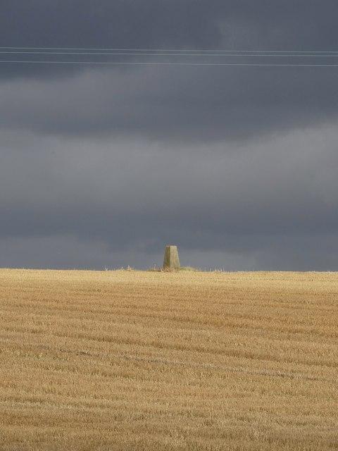 Triangulation pillar south of Harthill (Fir Hill)