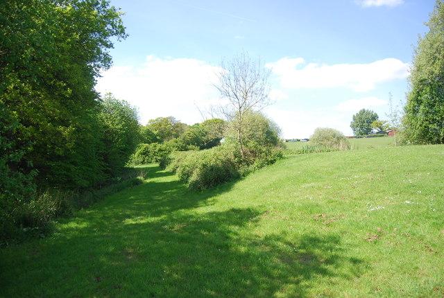 Near Wattlehurst