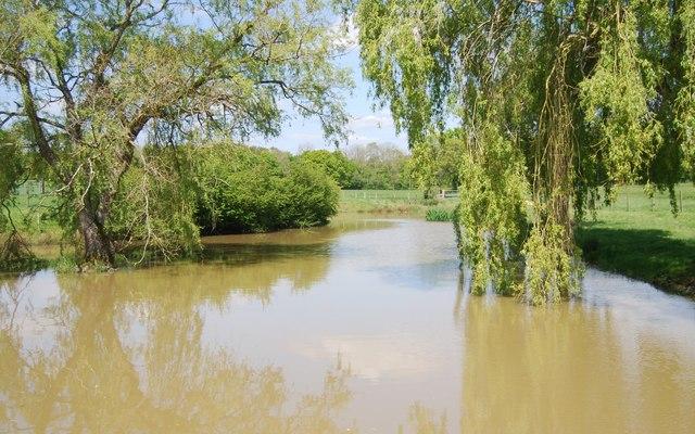 Wattlehurst Trout Lakes