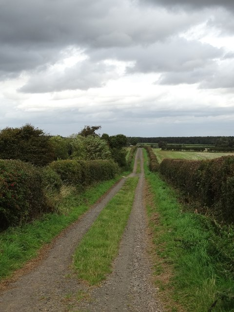 On Southard's Lane near Thorpe Salvin