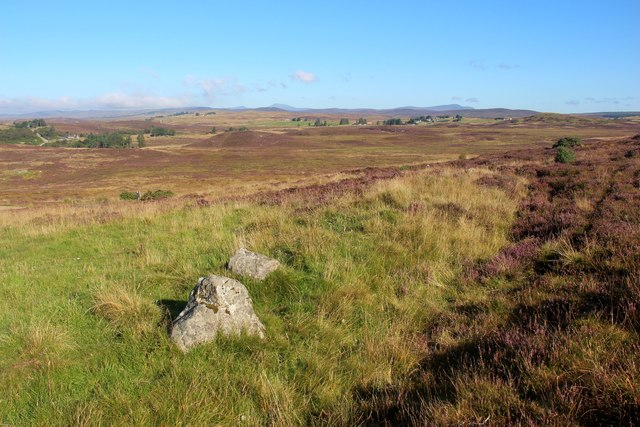 Moorland above Strath Fleet at Rogart