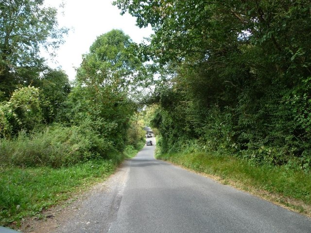 The road to the Barringtons alongside Handpost Covert
