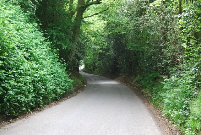 Descending Broom Lane