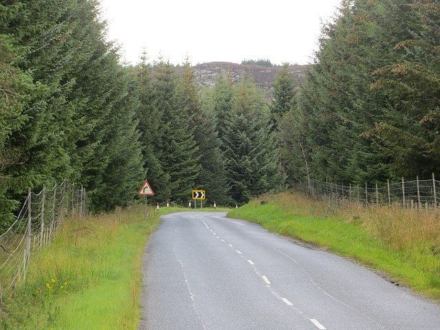 A826, Griffin Forest