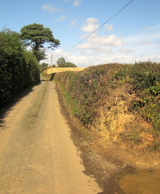 Lane past Hole Acre
