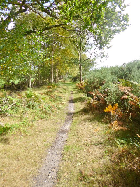 Stoborough Heath, footpath