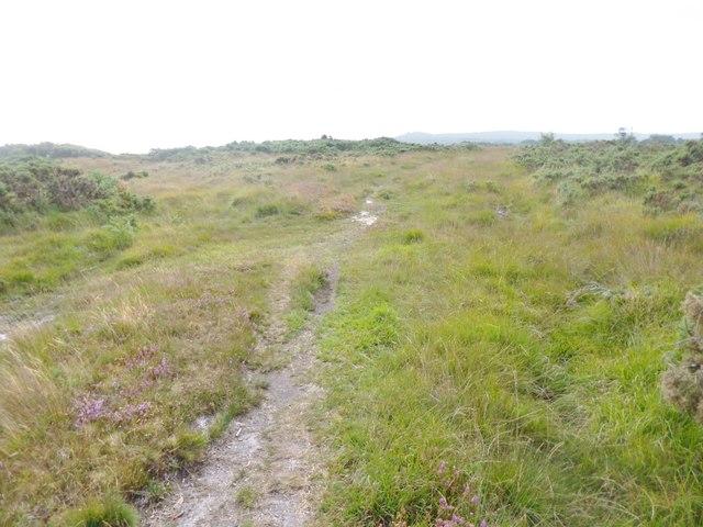 Stoborough Heath, Purbeck Way