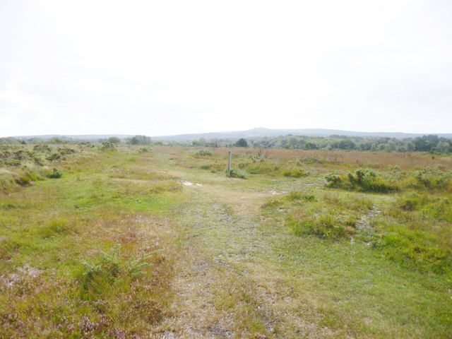 Stoborough Heath, footpath junction