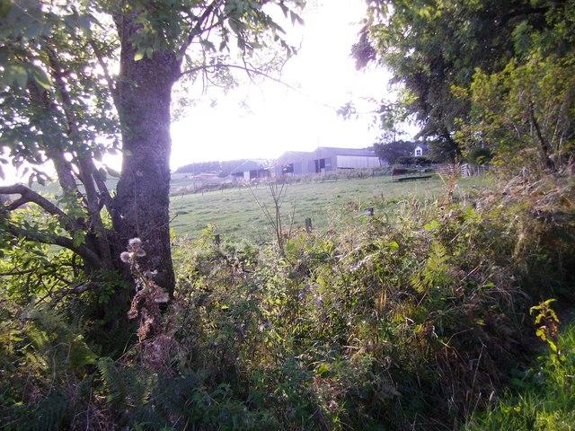 Tillyneckle Farm