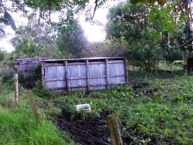 Corrugated iron livestock shelter