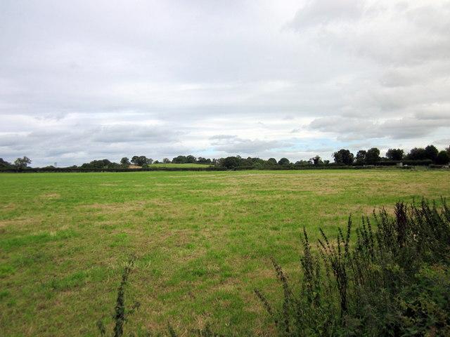 Footpath to Bradley Brook