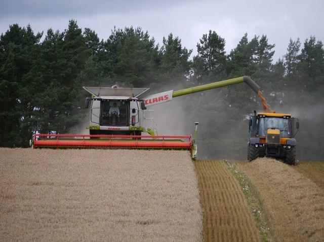 Discharging Grain