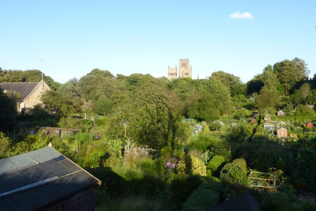 Cathedral over allotments
