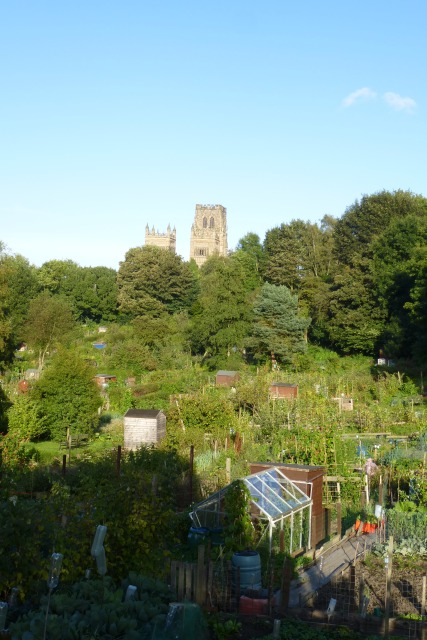 Allotments off Margery Lane