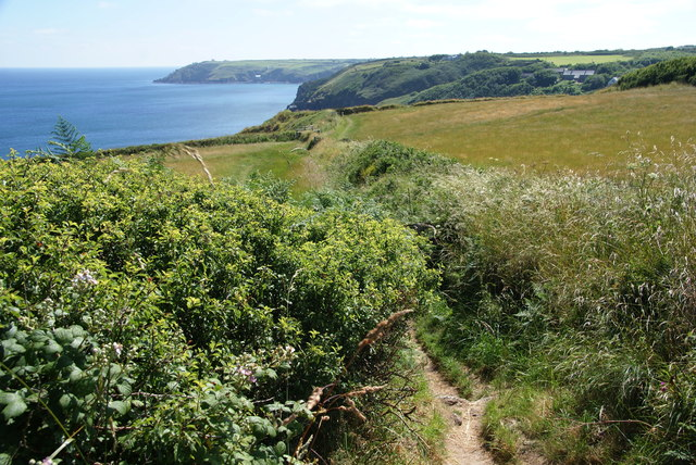 The South West Coast Path near Kildown Point