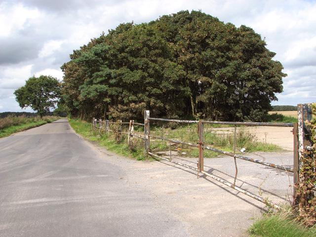 View along Muck Lane